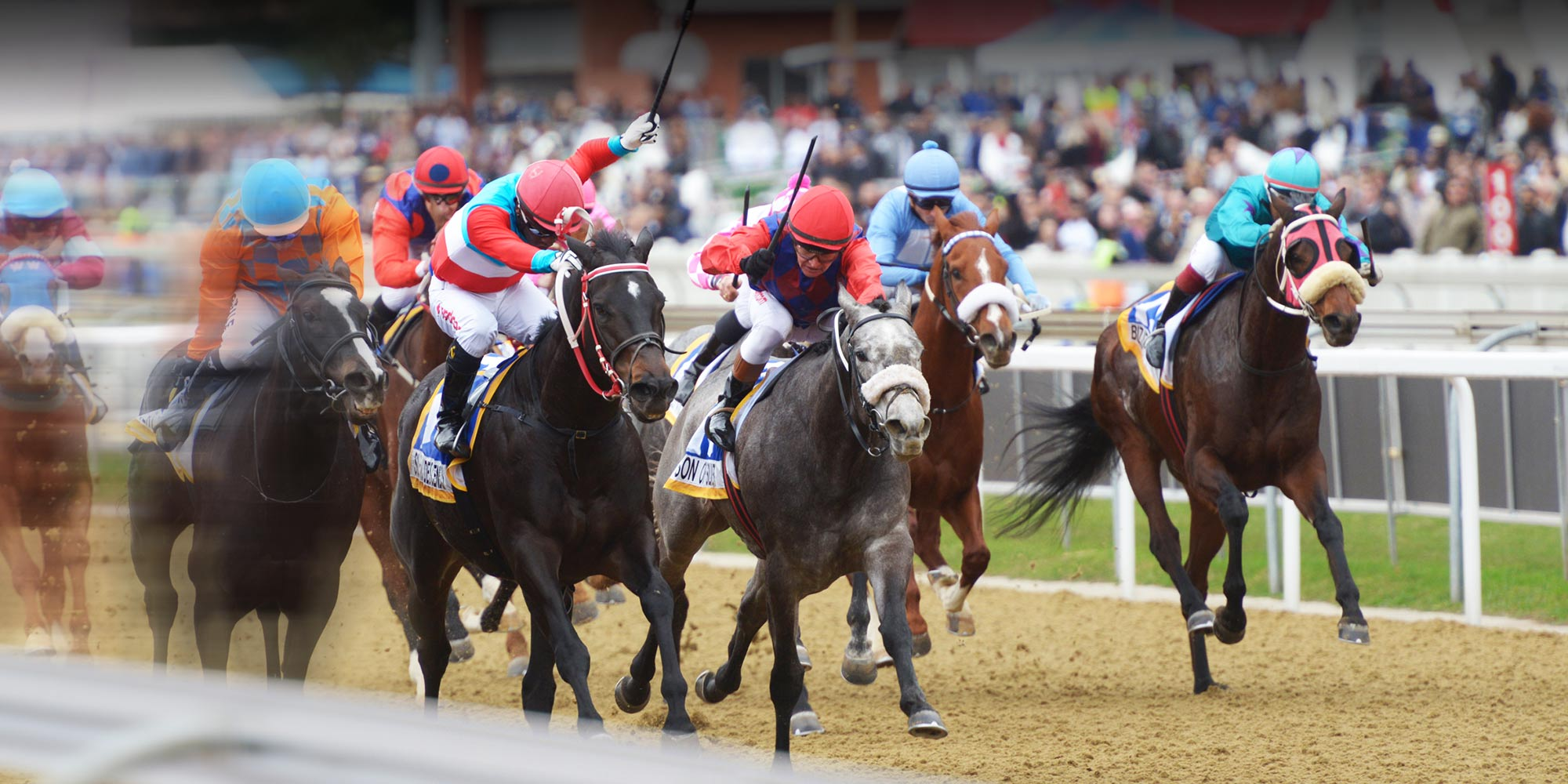 Durban july runners and bettingadvice buffalo wild wings sports betting delaware