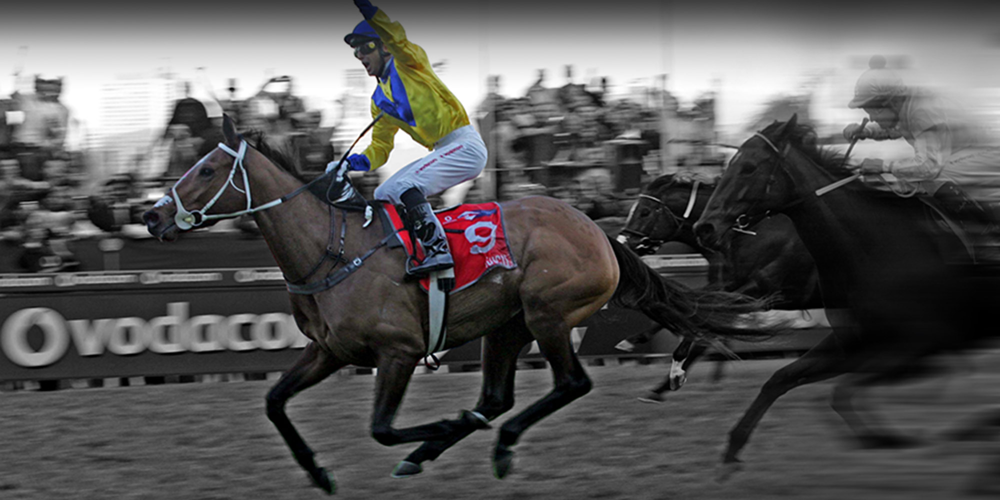 Durban july runners and betting lines european elections betting odds