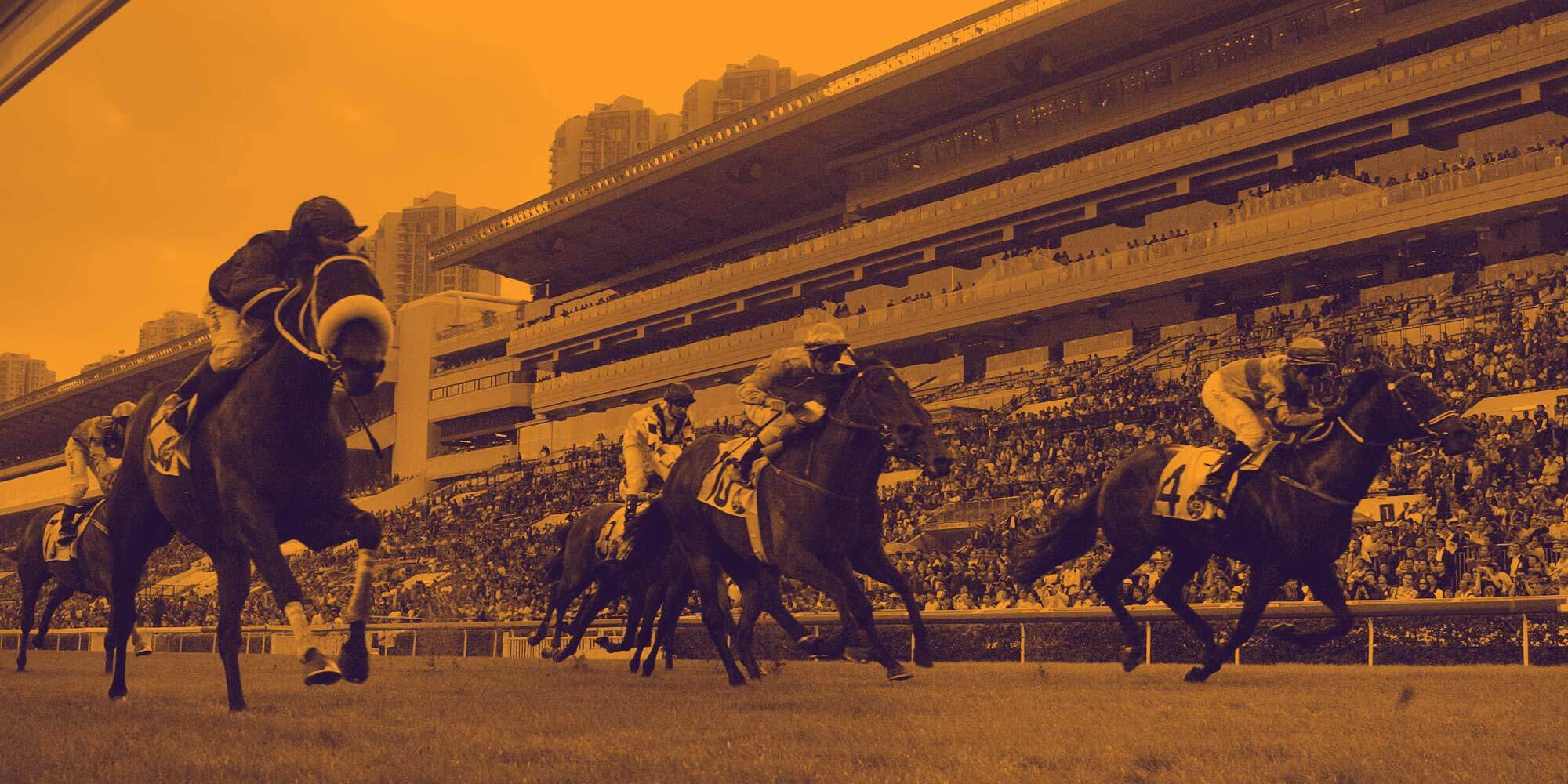 Hong Kong Horse Racing Tips – Sha Tin 24 May 2020