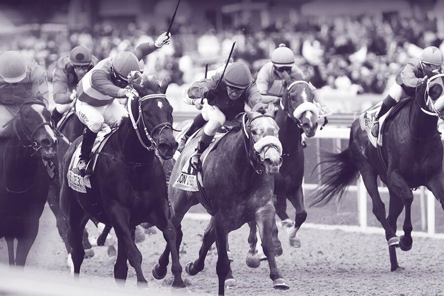 durban july runners and betting on sports